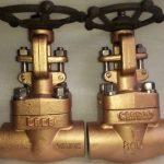 Fotografía de 2 válvulas de compuerta de materiales especiales para control de agua